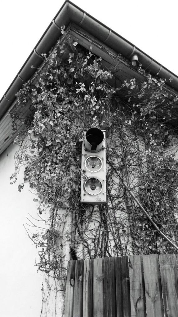 Urban Curiosity